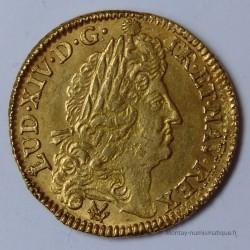 Louis XIV Louis d'or à l'écu 1691P Dijon, type définitif