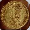 Charles IX Écu d'or au soleil 1564 La Rochelle
